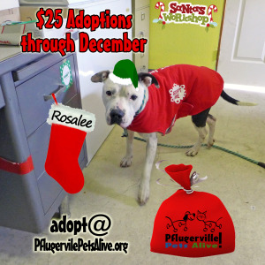 rosalee holidays helper